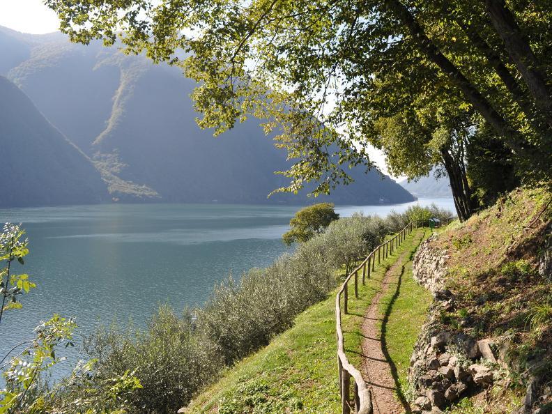 Sentiero Ulivi Gandria